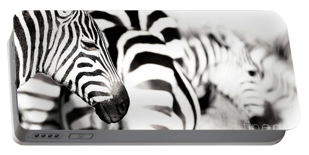 Portrait Portable Battery Charger featuring the photograph Zebras Black And White by Jane Rix