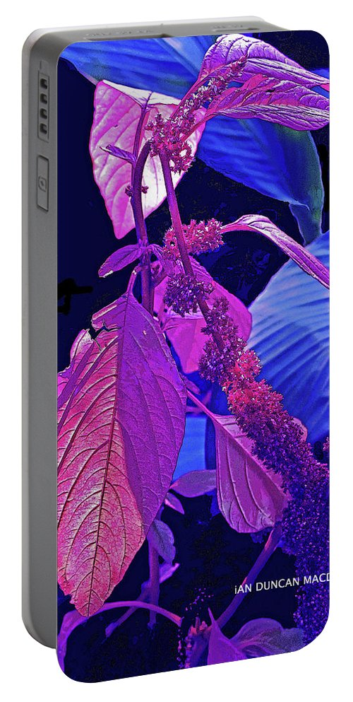 Blue Portable Battery Charger featuring the photograph Climbing Leaves by Ian MacDonald
