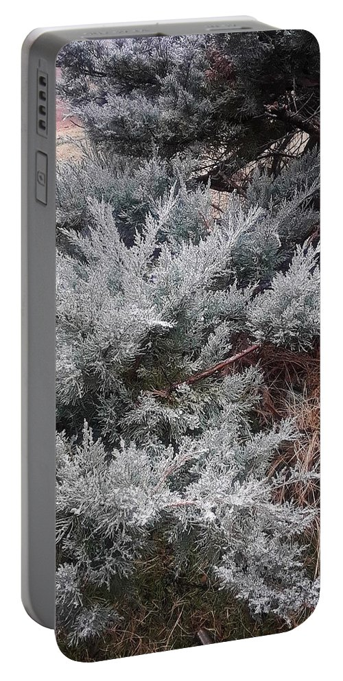 Scenery Portable Battery Charger featuring the photograph First Frost by Ariana Torralba