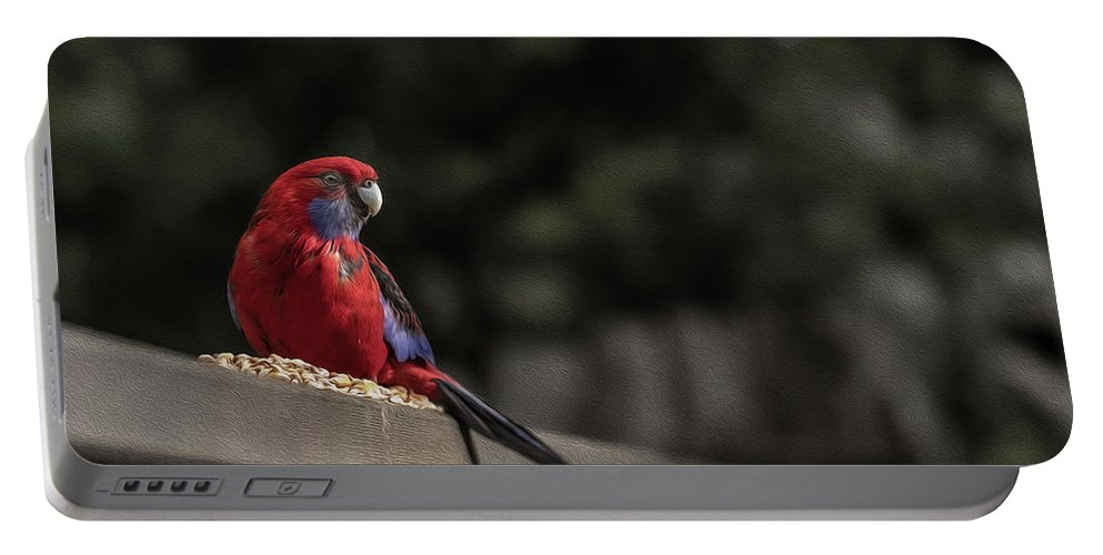 Rosella Portable Battery Charger featuring the photograph Rosella 1 by Leigh Henningham