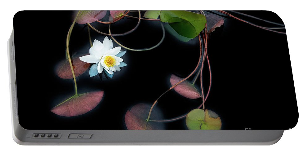 Gardens Portable Battery Charger featuring the photograph She Speaks to the Leaves of Love by Marilyn Cornwell