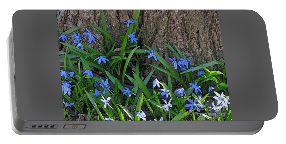 Wildflower Portable Battery Charger featuring the photograph Siberian Squill by Ann Horn