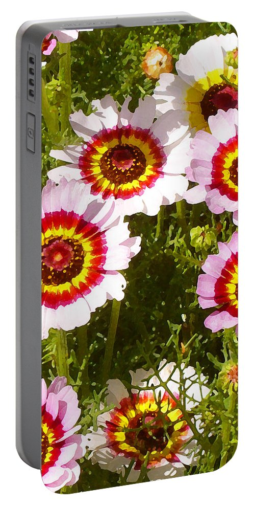 Wildflower Portable Battery Charger featuring the painting Spring Wildflowers by Amy Vangsgard