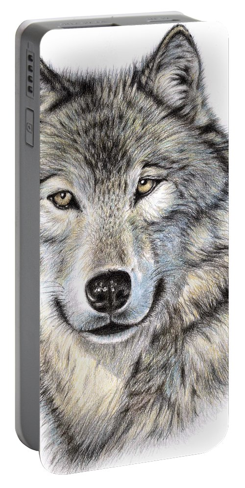 Wolf Portable Battery Charger featuring the drawing The Wolf by Nicole Zeug