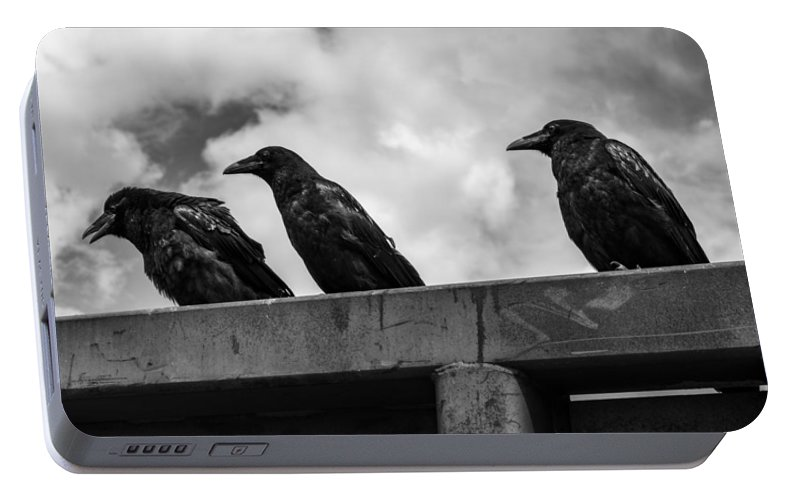 Three Portable Battery Charger featuring the photograph Three Crows 2 by Damon Dulewich