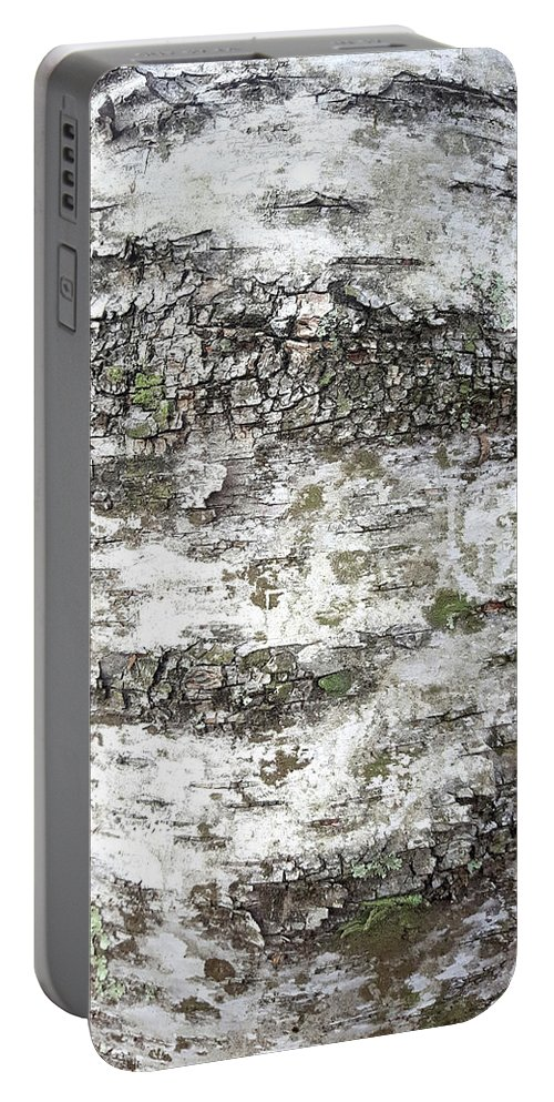White Birch Bark Portable Battery Charger featuring the photograph White Birch Bark by Trevor Slauenwhite