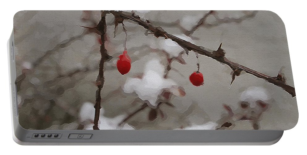Winter Berries Portable Battery Charger featuring the photograph Winter Berries by Linda Sannuti