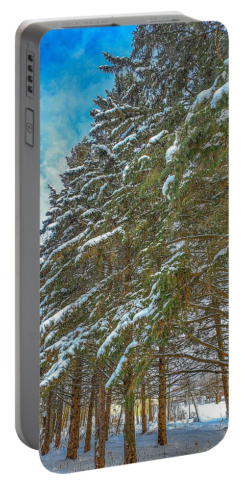 Nature Portable Battery Charger featuring the photograph Winter trees by M Forsell