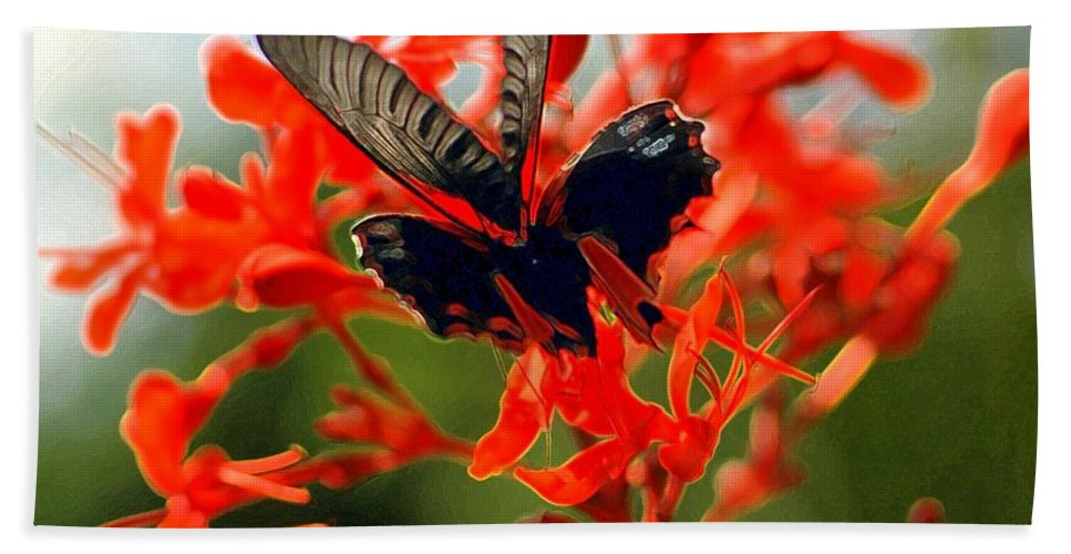 Insect Beach Towel featuring the photograph Butterfly Dance by Kathleen Struckle