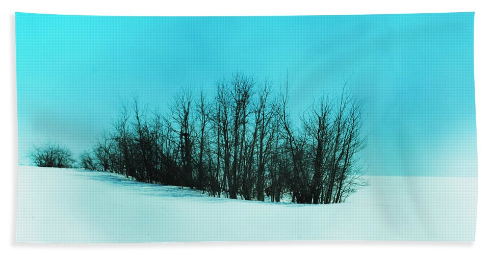 Landscapes Beach Towel featuring the photograph Still Of Cold by The Artist Project