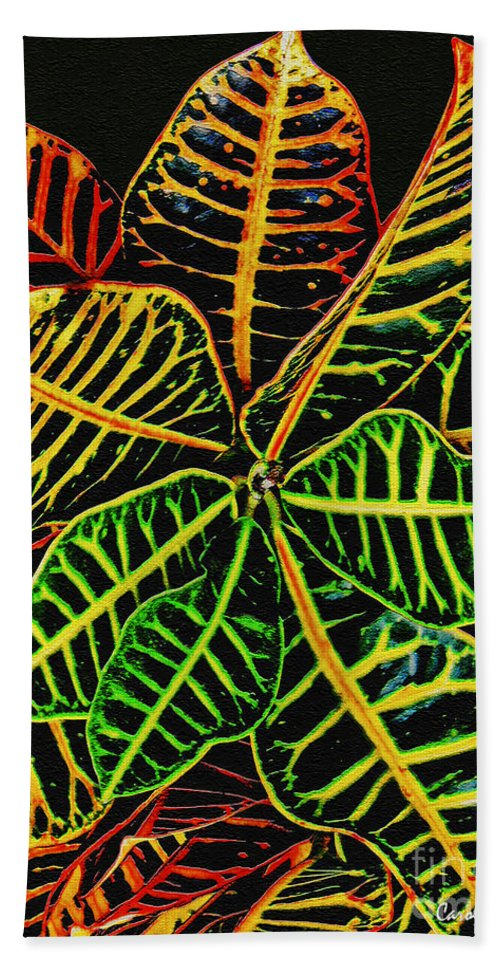 Cadiaeum Beach Towel featuring the photograph Cadiaeum Crotons Tropical Houseplant Shrub by Carol F Austin