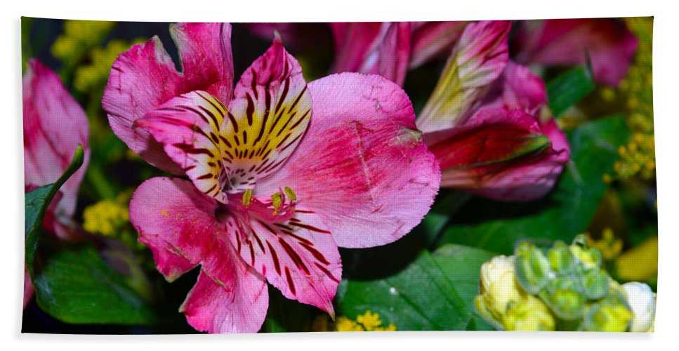 Exotic Beach Towel featuring the photograph Exotic Flowers by Brent Dolliver