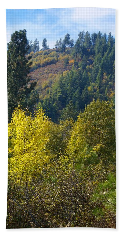 Fall Colors Beach Towel featuring the photograph Fall In Spokane by Ben Upham III