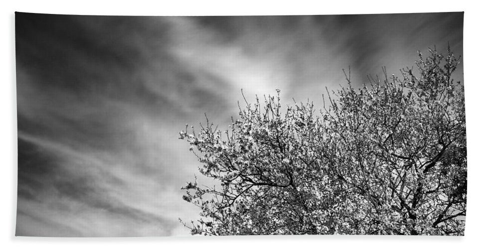 Flower Beach Towel featuring the photograph Flowering Almond by Guido Montanes Castillo