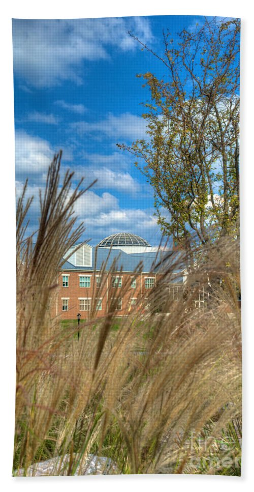 Founders Beach Towel featuring the photograph Founders Hall Through The Grasses by Mark Dodd