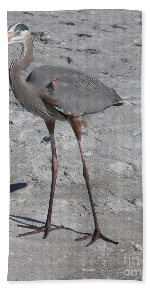 Heron Beach Towel featuring the photograph Great Blue Heron On The Beach by Christiane Schulze Art And Photography