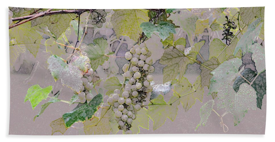 Horizontal Beach Towel featuring the photograph Hanging Thompson Grapes Sultana by Sally Rockefeller