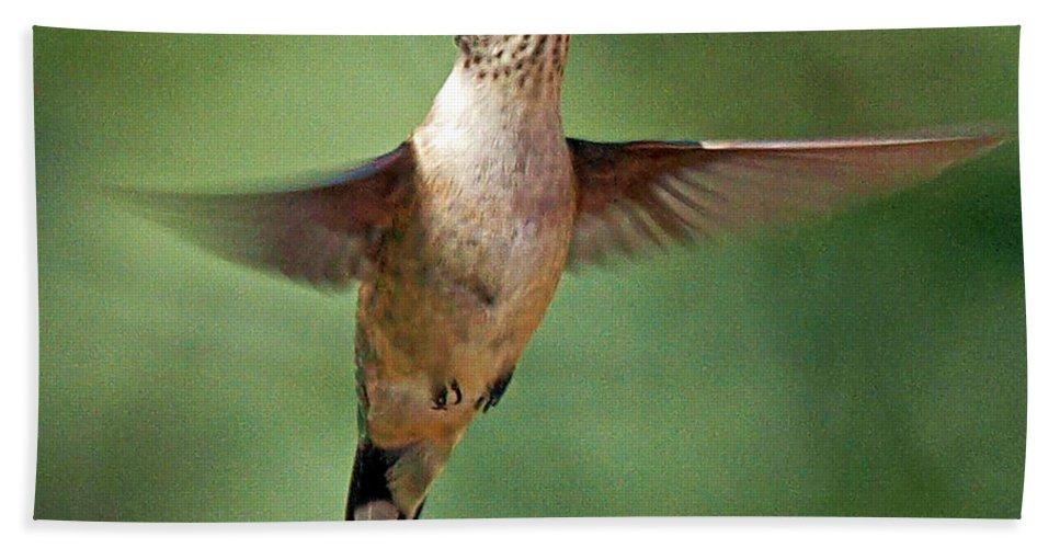 Hunningbird Beach Towel featuring the photograph In Flight by Pat Walsh