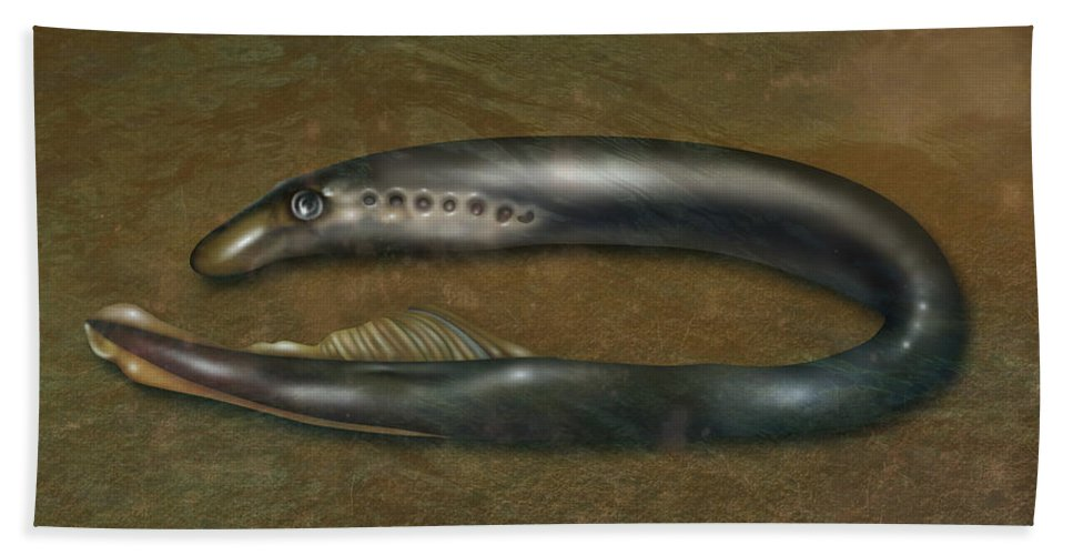 Nature Beach Towel featuring the photograph Lamprey Eel, Illustration by Gwen Shockey