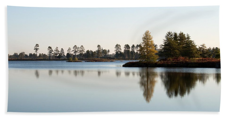 Wetland Beach Towel featuring the photograph Michigan Wetland by Linda Kerkau