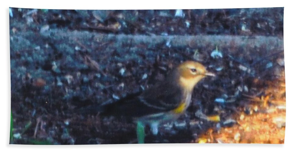 At My House Beach Towel featuring the photograph Mockingbird by Robert Floyd