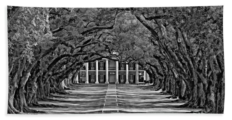 Oak Alley Plantation Beach Towel featuring the photograph Oak Alley Bw by Steve Harrington