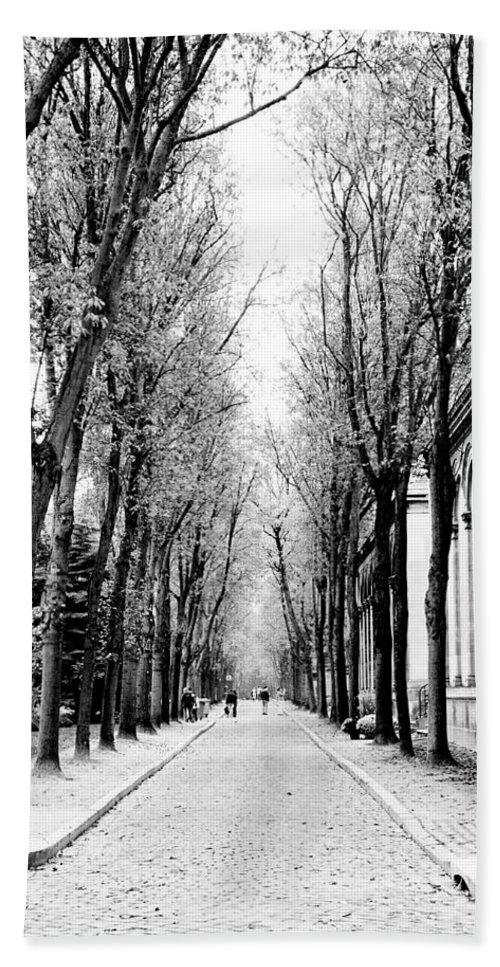 Paris Beach Towel featuring the photograph Pere-lachais Cemetery In Paris France by Richard Rosenshein