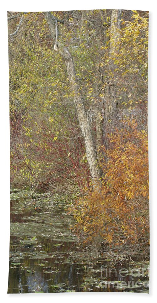 Autumn Beach Towel featuring the photograph Pondside Pastel by Ann Horn