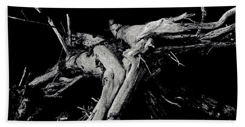 Black And White Beach Towel featuring the photograph Roots 2 by Amar Sheow