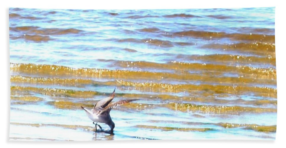 Feeding In The Waves Beach Towel featuring the photograph Sea Bird by Robert Floyd