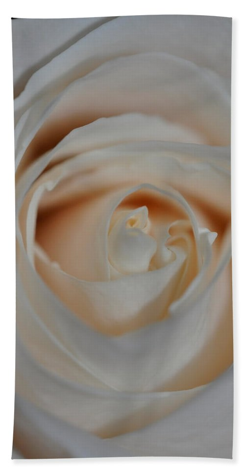 Petal Beach Towel featuring the photograph Soft And Easy by Teri Schuster