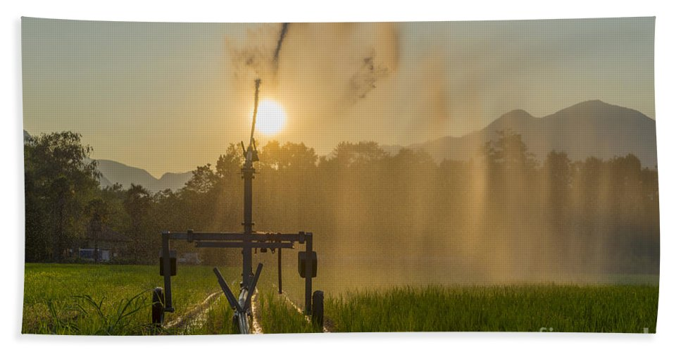 Sunrise Beach Towel featuring the photograph Sprinkler Irrigation by Mats Silvan