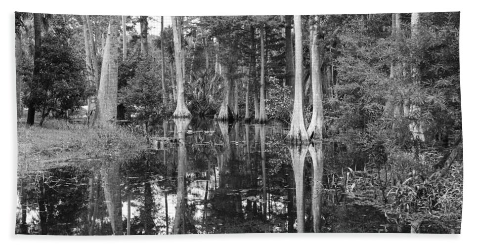 Swamp Beach Towel featuring the photograph Swampland by Carey Chen