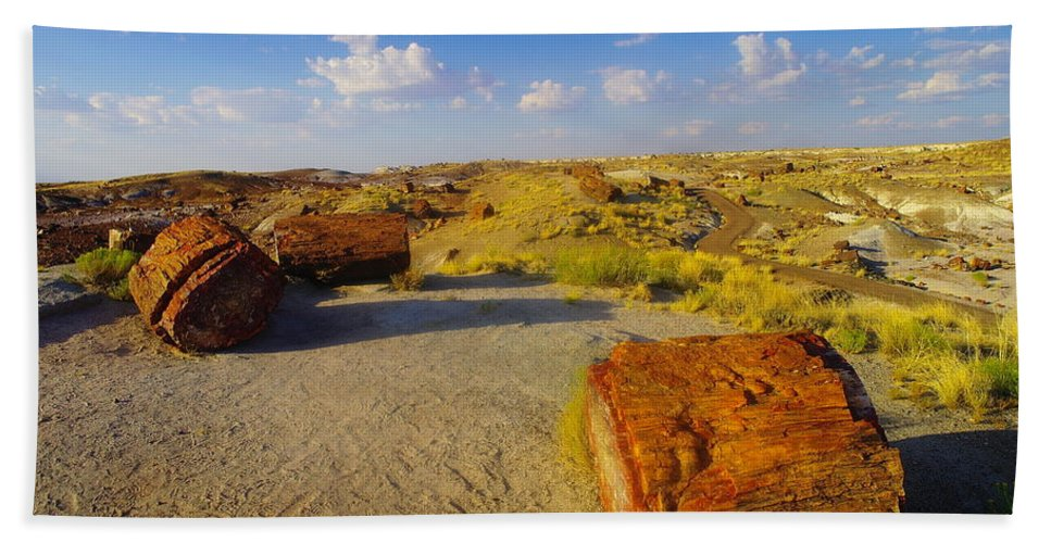 Rocks Beach Towel featuring the photograph The Painted Desert by Jeff Swan
