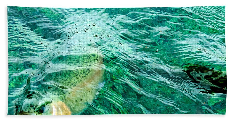 Rainbow Trout Beach Towel featuring the photograph Catching Flies by John Lee