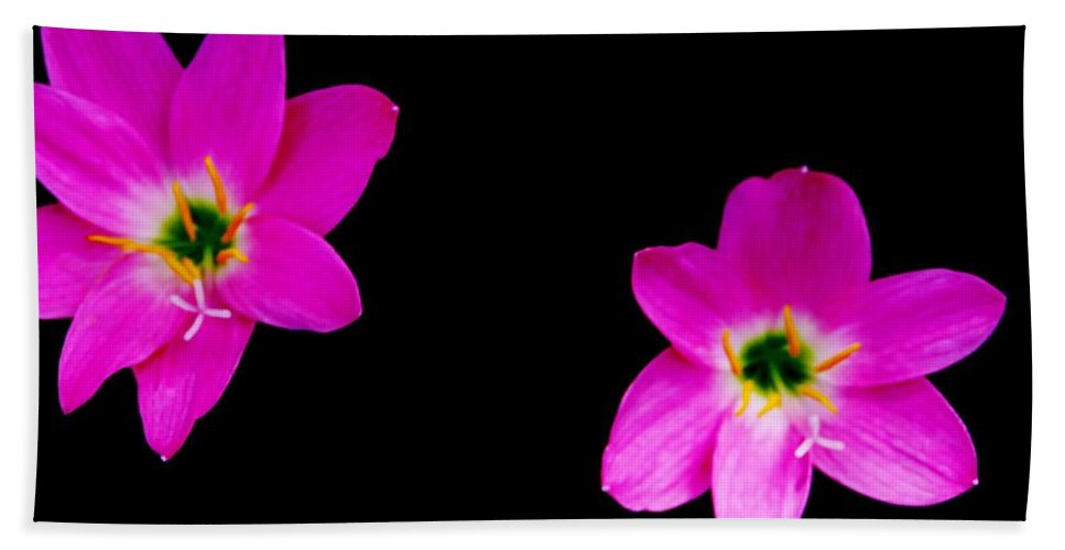 Color Beach Towel featuring the photograph Wildflowers by Amar Sheow