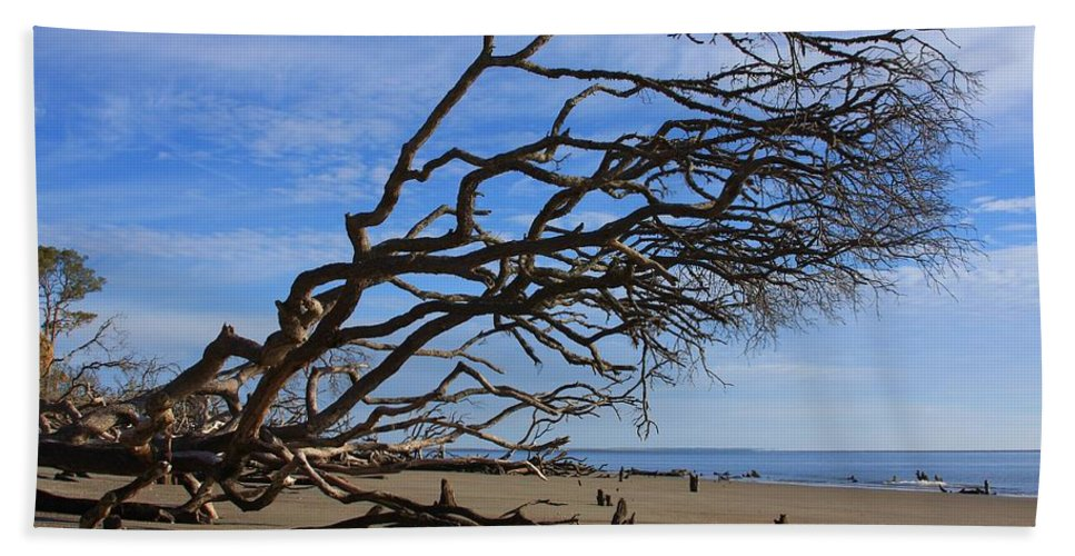 Hunting Island Beach Towel featuring the photograph Hunting Island by Mountains to the Sea Photo