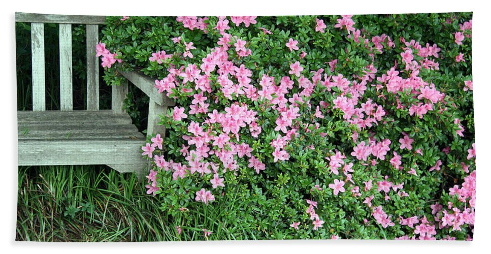 Azaleas Beach Towel featuring the photograph A Seat By The Flowers by Cora Wandel