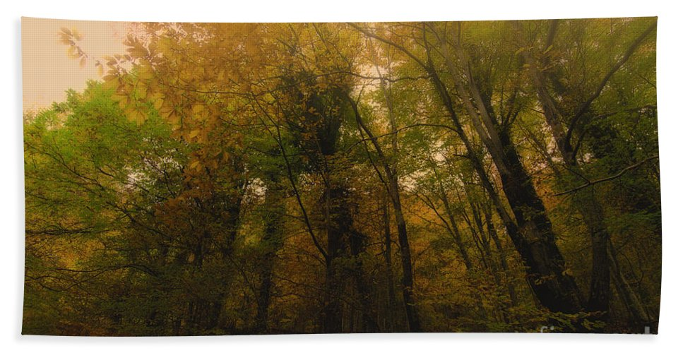 Autumn Beach Towel featuring the photograph Autumn by Giovanni Chianese