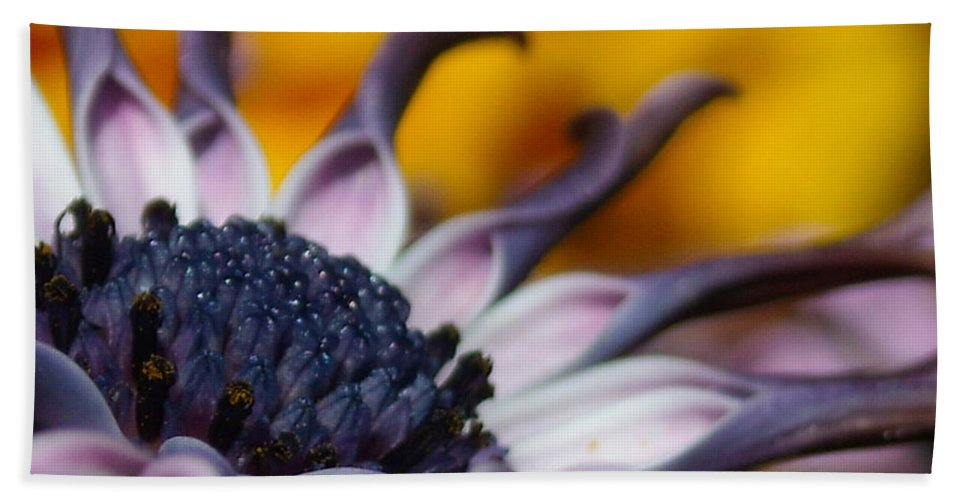 Flower Beach Towel featuring the photograph Beautiful by Line Gagne