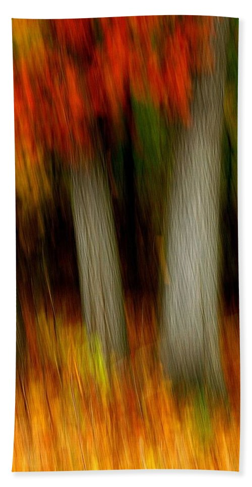 Woods Beach Towel featuring the photograph Blazing In The Woods by Randy Pollard
