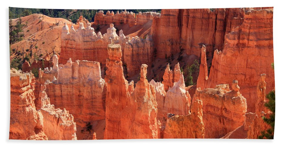 Utah Beach Towel featuring the photograph Bryce Canyon Red Rock by Aidan Moran