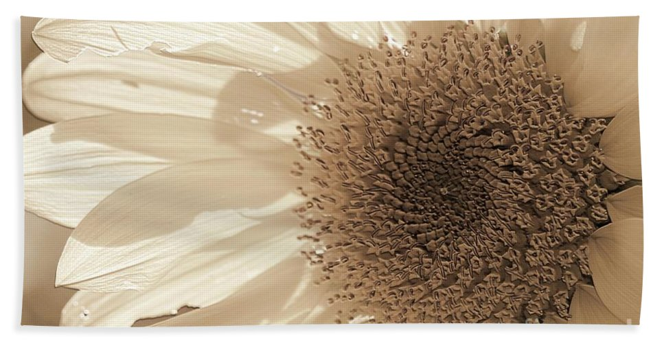 Mccombie Beach Towel featuring the photograph Chipmunk's Peredovik Sunflower by J McCombie
