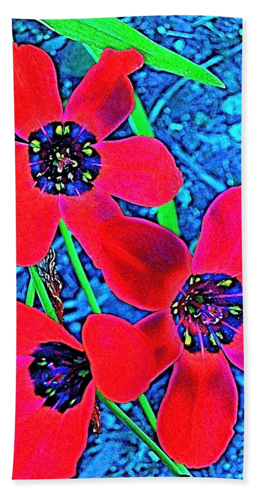 Flowers Beach Towel featuring the photograph Color 1 by Pamela Cooper