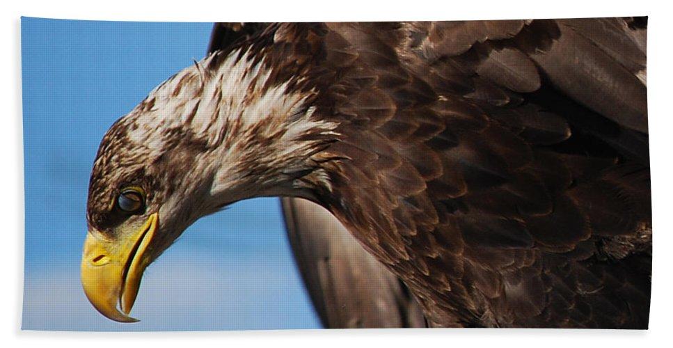 Becky Furgason Beach Towel featuring the photograph #islideforward by Becky Furgason