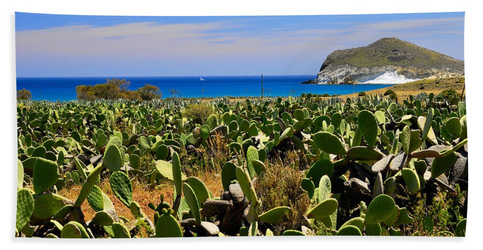 Cactus Beach Towel featuring the photograph Genoveses Beach by Guido Montanes Castillo