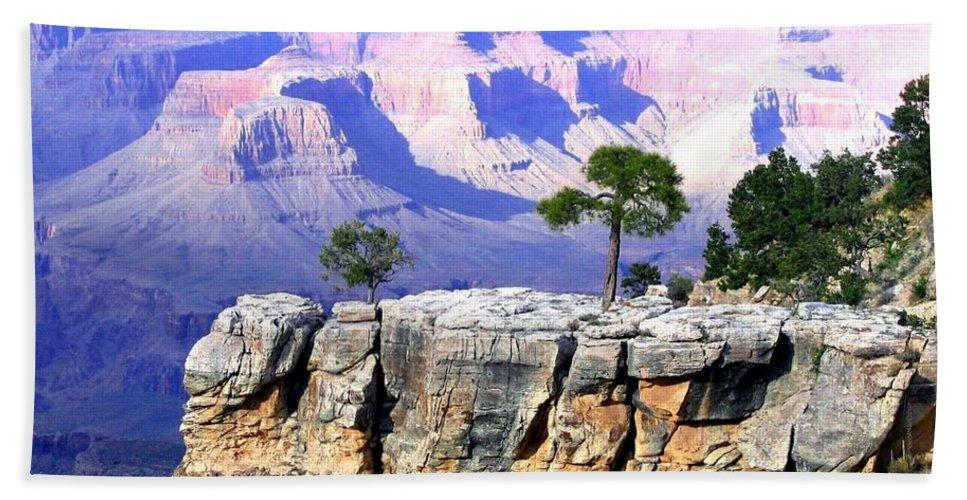 #grandcanyon1vista Beach Sheet featuring the photograph Grand Canyon 1 by Will Borden