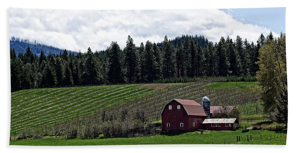 Barn Beach Towel featuring the photograph Oregon by Image Takers Photography LLC