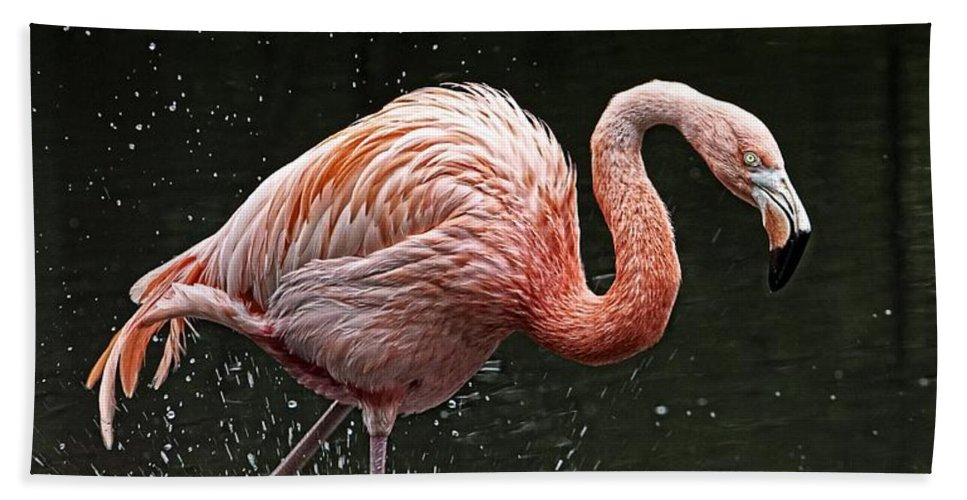 Pink Flamingo Beach Towel featuring the photograph Pretty In Pink by Alice Gipson