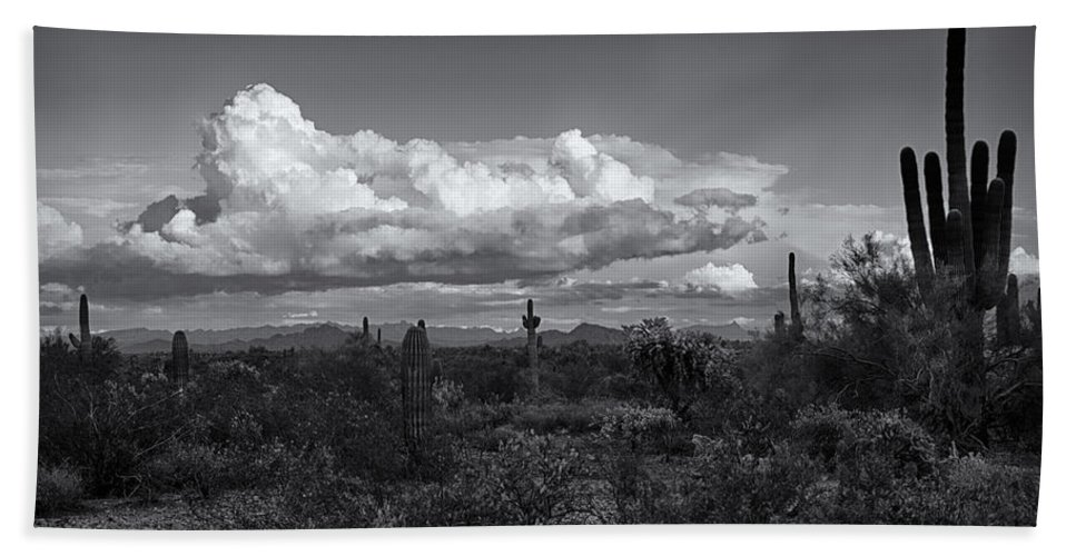 Arizona Beach Towel featuring the photograph Sonoran Desert In Black And White by Saija Lehtonen
